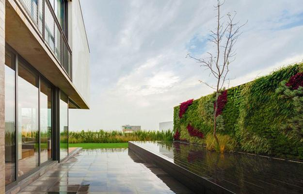 Top 10 Landscape and Small Garden Trends for 2019