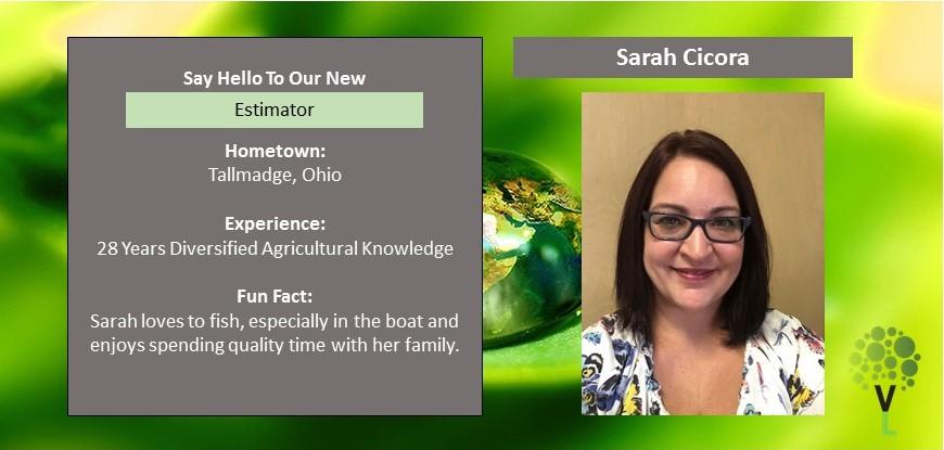 Sarah Cicora – Estimator